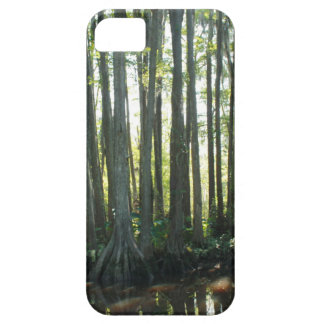 Sunny Cypress iPhone 5 Covers