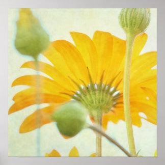 Sunny Daisy - Warm Light Yellow Decor Canvas Print