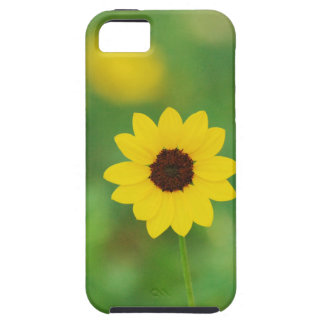 sunny day flower iPhone 5 cases