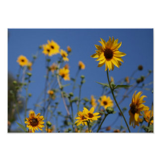 """""""Sunny Flowers"""" Poster"""