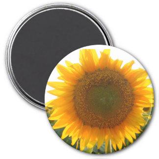 Sunny heart magnet
