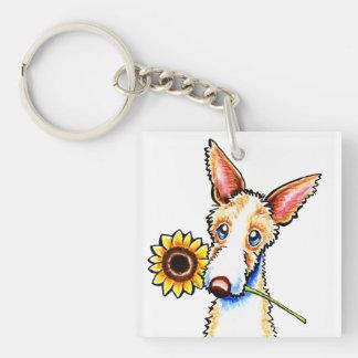 Sunny Ibizan Hound Wirehaired Off-Leash Art™ Single-Sided Square Acrylic Keychain