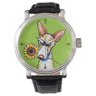 Sunny Ibizan Hound Wirehaired Off-Leash Art™ Wrist Watch