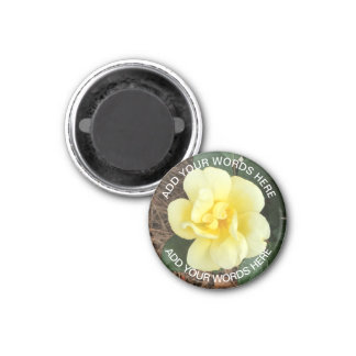 Sunny Knock Out Rose: Personalized Magnet