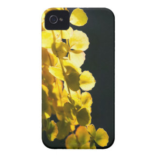 Sunny leaves Case-Mate iPhone 4 case