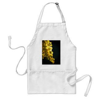 Sunny leaves standard apron