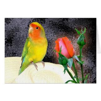 Sunny Lovebird Card