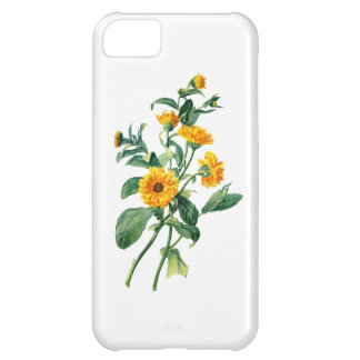 Sunny Marigolds Drawn From Nature iPhone 5C Cover