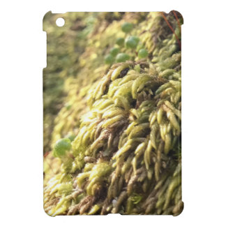 Sunny Moss and Worts Case For The iPad Mini