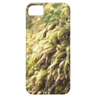 Sunny Moss and Worts iPhone 5 Cases
