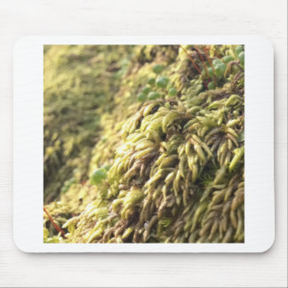Sunny Moss and Worts Mouse Pad