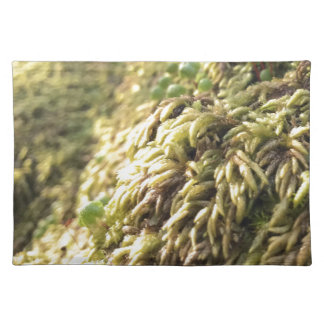 Sunny Moss and Worts Place Mat