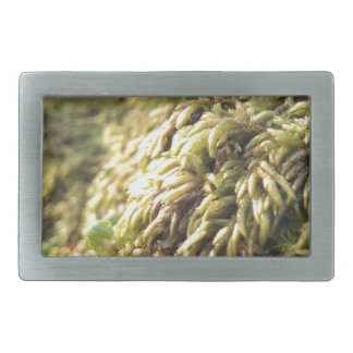 Sunny Moss and Worts Rectangular Belt Buckle