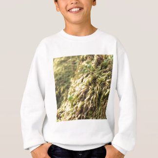 Sunny Moss and Worts Sweatshirt