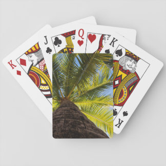 Sunny Palm Tree Playing Cards