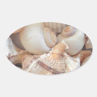 Sunny Summer Seashells, Sea Shells Beach Love Oval Sticker