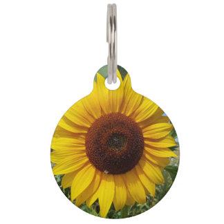 Sunny Sunflower Pet ID Tag