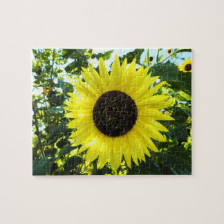 Sunny Sunflower Puzzle