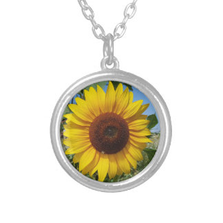 Sunny Sunflower Silver Plated Necklace