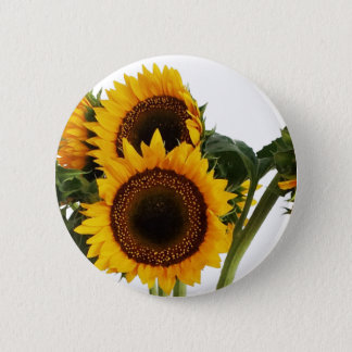 Sunny Sunflowers 2 Inch Round Button
