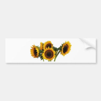 Sunny Sunflowers Bumper Sticker