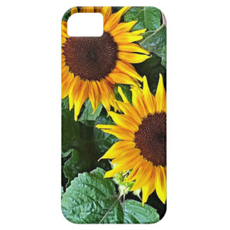 Sunny Sunflowers Case For The iPhone 5