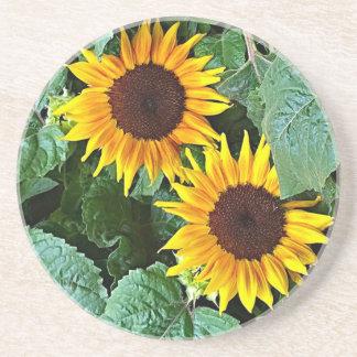 Sunny Sunflowers Coaster