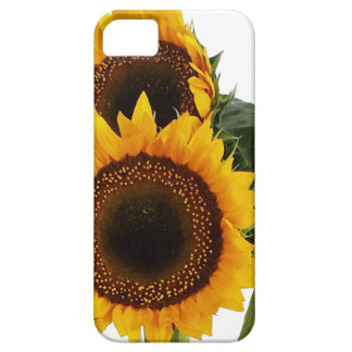Sunny Sunflowers iPhone 5 Covers
