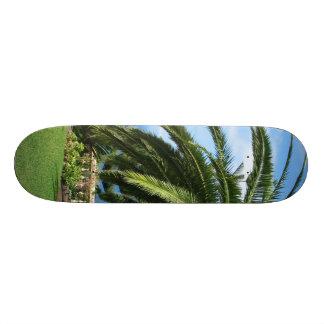 sunny Tenerife Skateboards