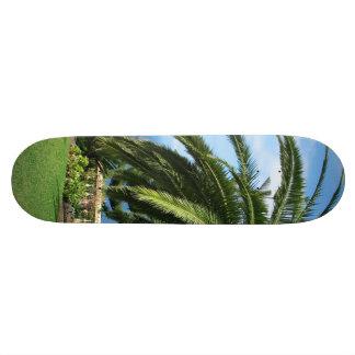 sunny Tenerife Skateboard