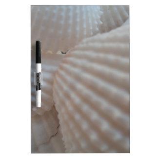 Sunny White Seashells, Sea Shell Beach Summer Love Dry Erase Whiteboard