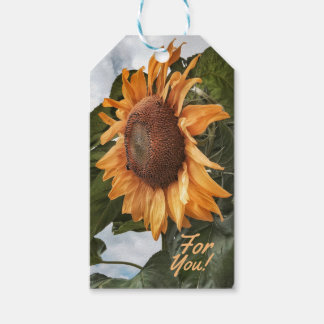 Sunny Wishes For You Gift Tags Pack Of Gift Tags