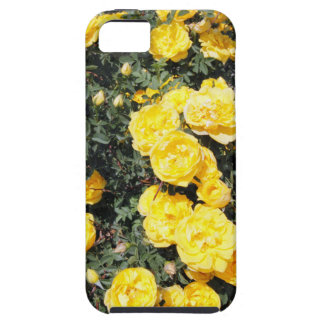 Sunny Yellow Rose Flowers Bus iPhone 5 Case
