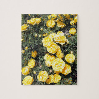 Sunny Yellow Rose Flowers Bus Jigsaw Puzzle