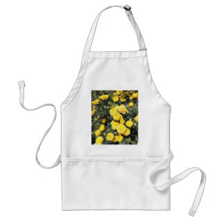Sunny Yellow Rose Flowers Bus Standard Apron