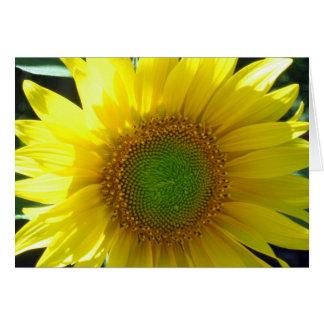 Sunny Yellow Sunflower Blank Card