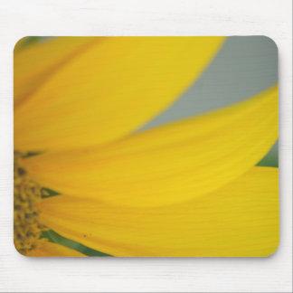 Sunny's Petals mousepad
