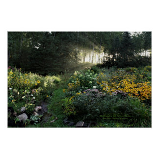 Sunrays in Late September Gardens Poster