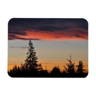 Sunrise and Trees Rectangular Photo Magnet