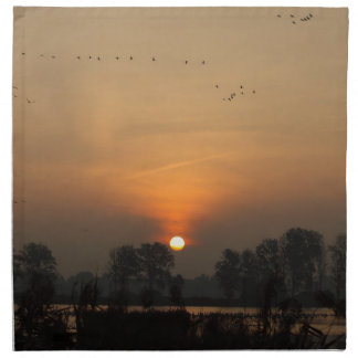 Sunrise at a lake with flying birds. napkin