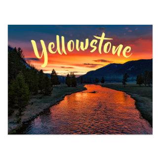 Sunrise At Yellowstone National Park Postcard