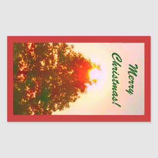 Sunrise Christmas Lights Photo 2 Sticker
