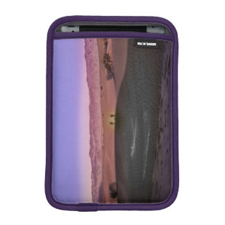 Sunrise Death Valley National Park iPad Mini Sleeve
