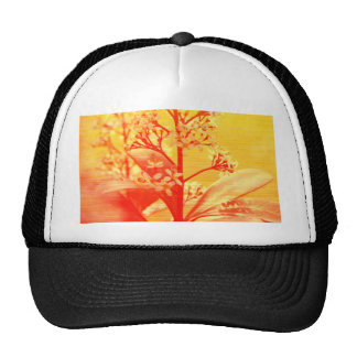 sunrise Flowers phptgraphed by Tutti Trucker Hat