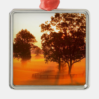Sunrise Horse Farm Versailles Kentucky Silver-Colored Square Ornament
