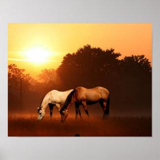 Sunrise horses poster
