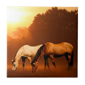Sunrise horses tile