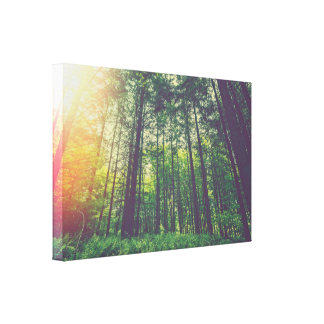 Sunrise in the green forest canvas print