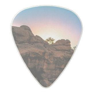 Sunrise Joshua Tree National Park Acetal Guitar Pick