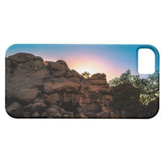 Sunrise Joshua Tree National Park iPhone 5 Cases